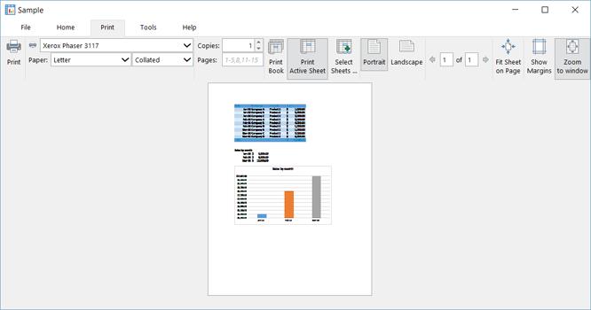 xlCompiler Print Preview